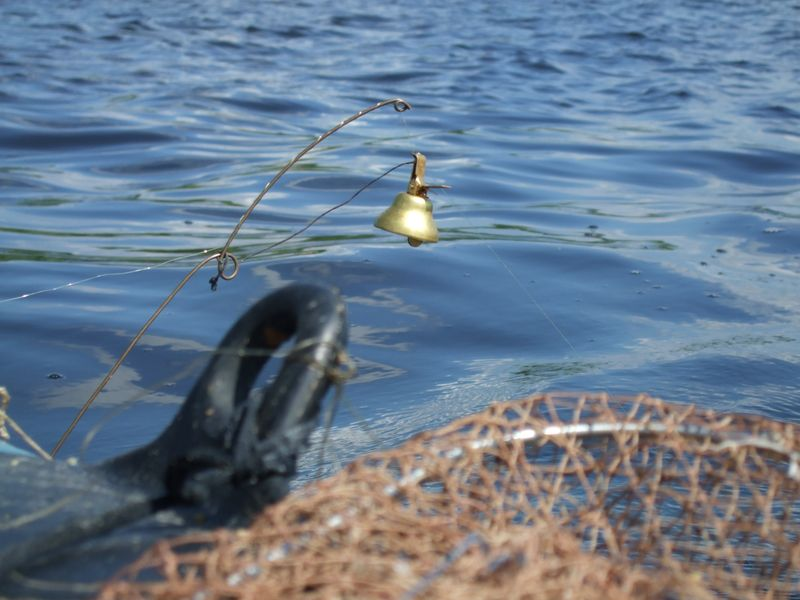 рыбалка на подпуска